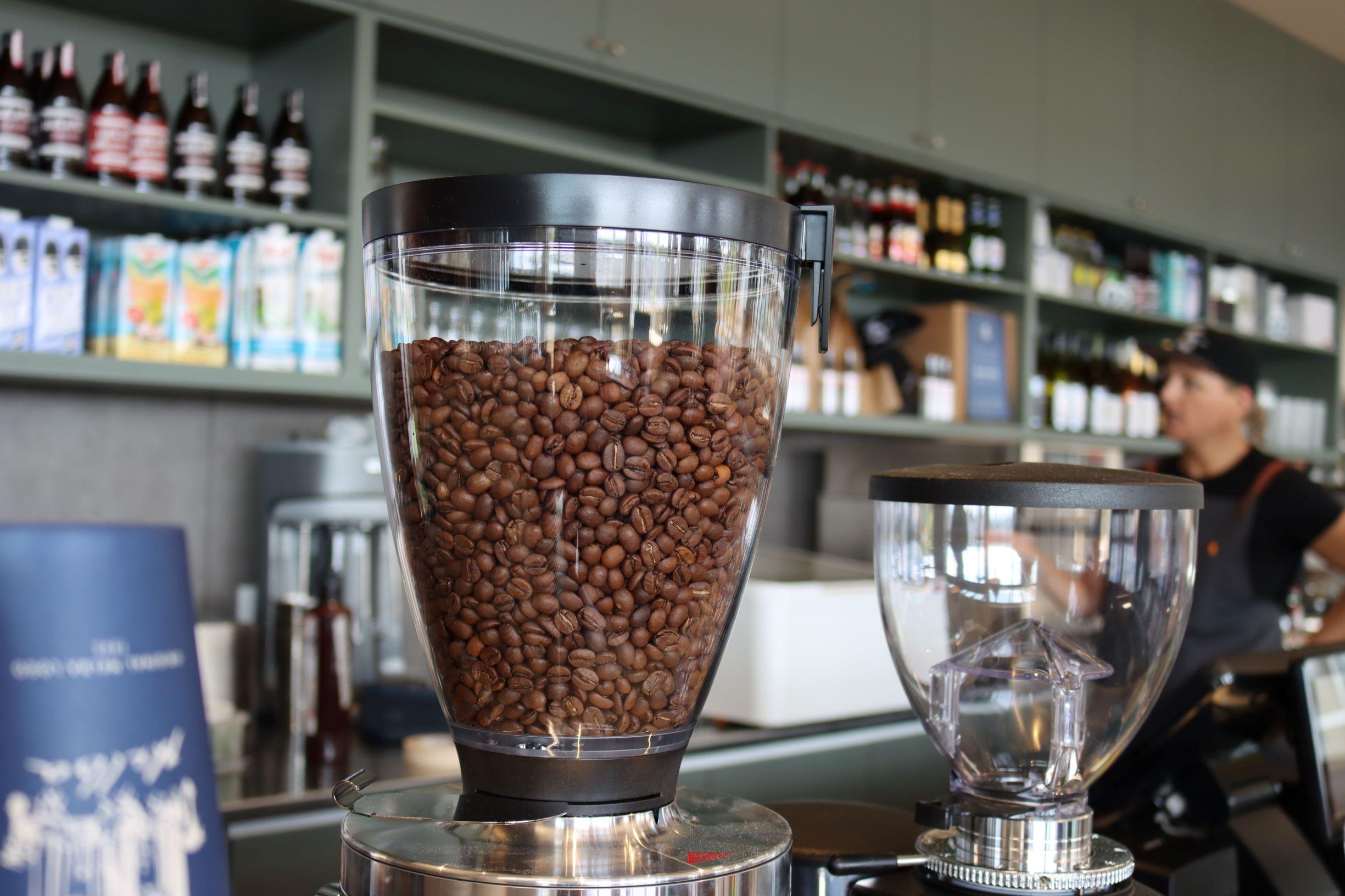 coffee beans in machine grinder